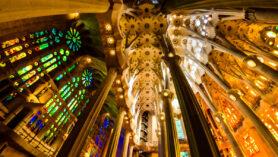 Das von baumähnlichen Säulen gestützte Deckengewölbe der Sagrada Familia