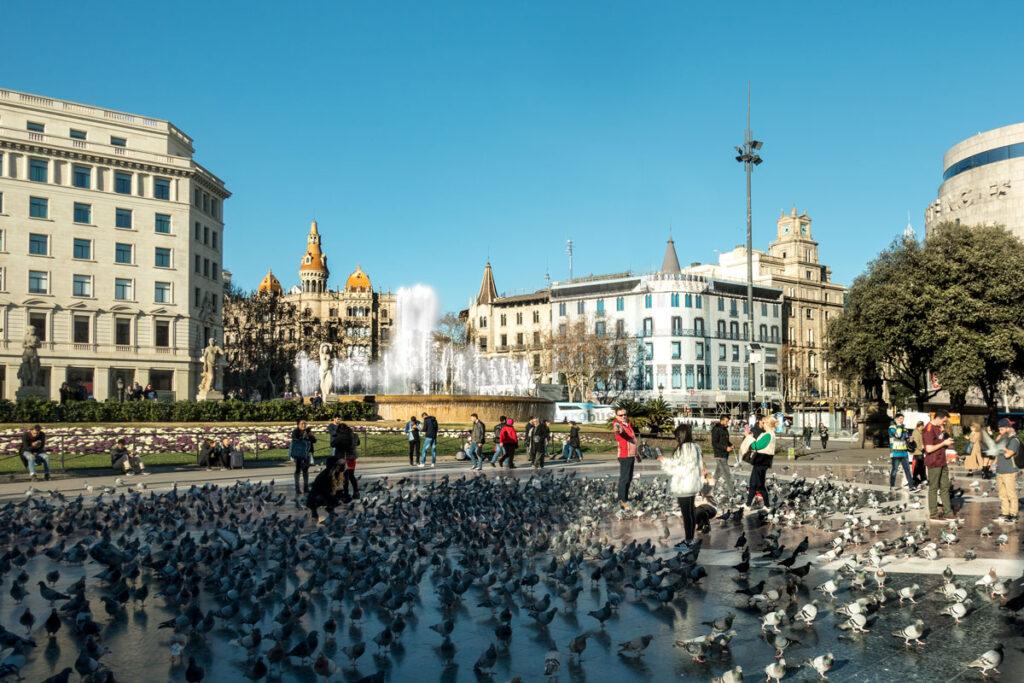Der mit Tauben gefüllte Platz im Zentrum von Barcelona.