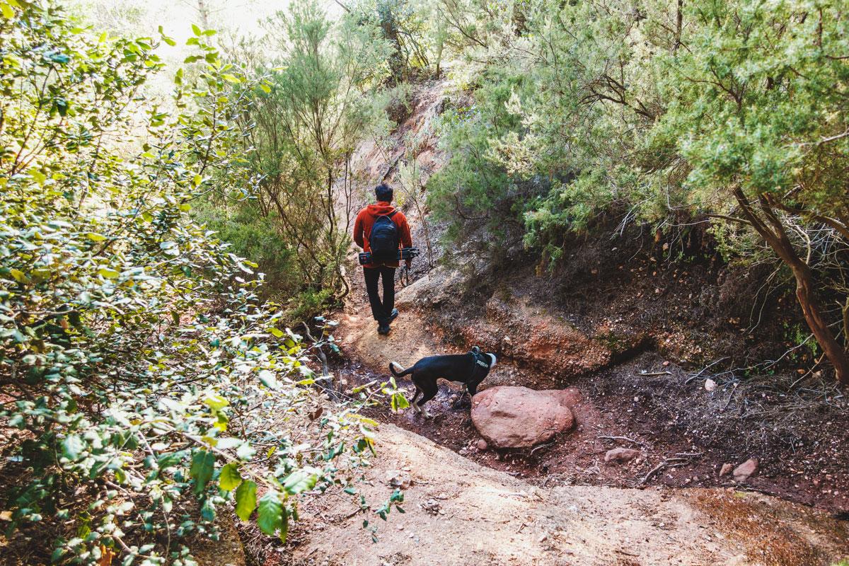 Wanderer und Hund laufen durch ein ausgetrocknetes Flussbett.