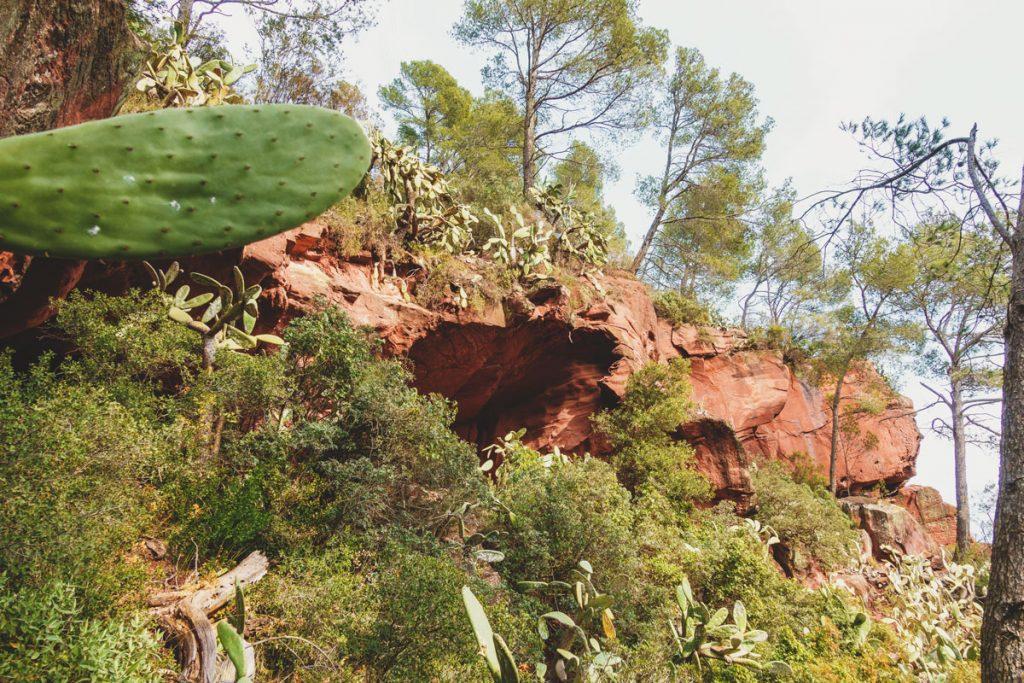 Die Höhlen von unten betrachtet.