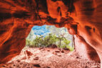 Ausblick aus dem Inneren der Höhle.
