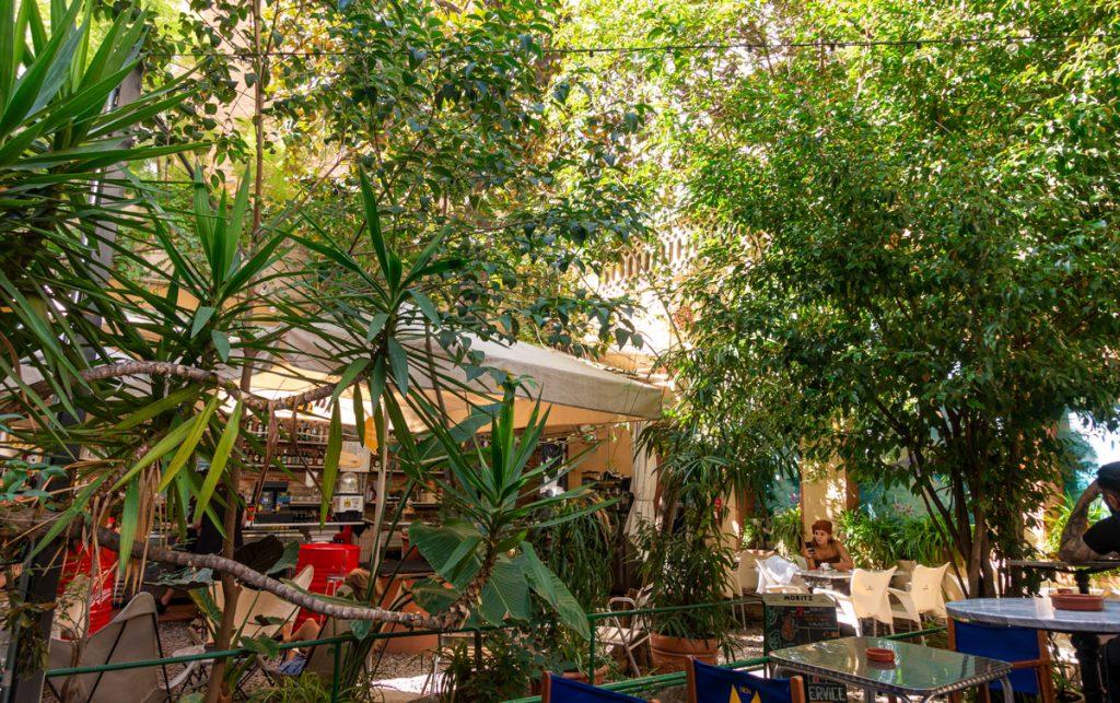 Kioskbar mitten unter grünen Palmen und Bäumen.