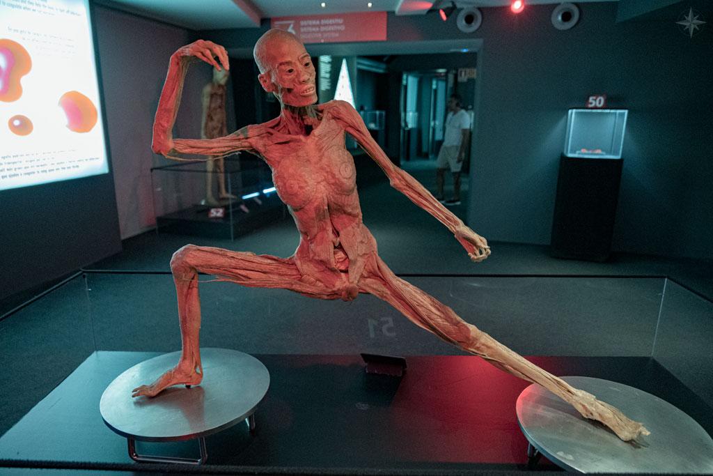 Körper in athletischer Position, mit gespreizten Beinen und erhobenem Arm.