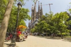 Eine Reihe von Rikschas warten im Park vor der Sagrada Familia auf Kundschaft.